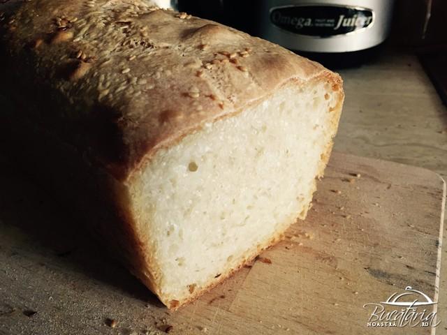 reteta ciabatta paine neframantata